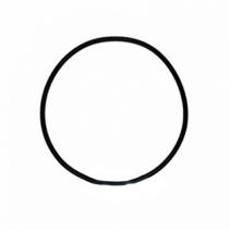 На изображении Уплотнительное кольцо к колбе Leader
