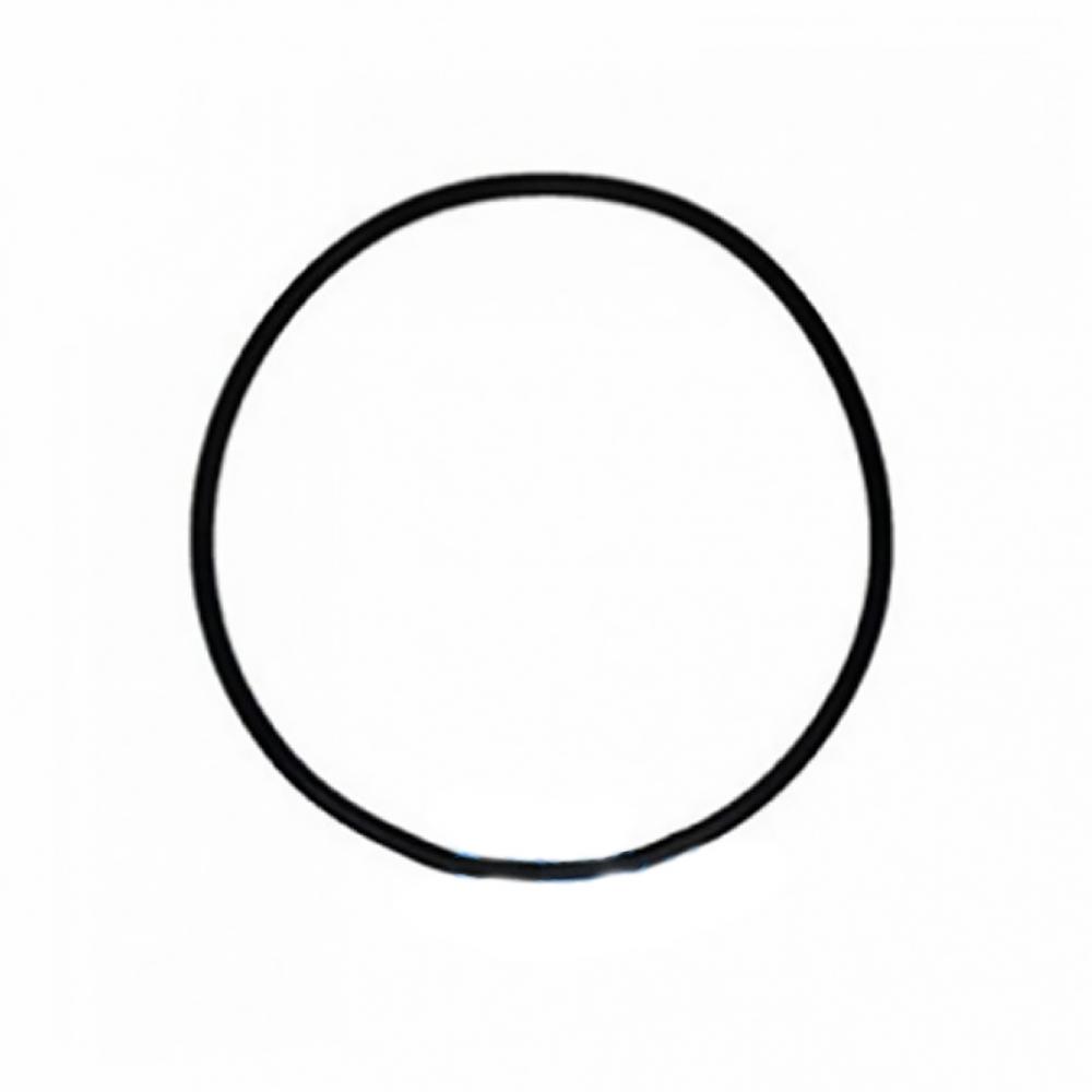 На изображении Уплотнительное кольцо (оринг) (верх) для корпусов серии BB типа