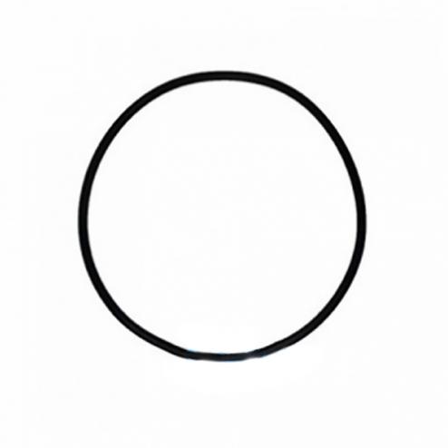 Фото 1 - На изображении Уплотнительное кольцо (оринг) (верх) для корпусов серии BB типа