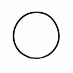 Фото 1 - На изображении Уплотнительное кольцо к колбам обратного осмоса Raifil