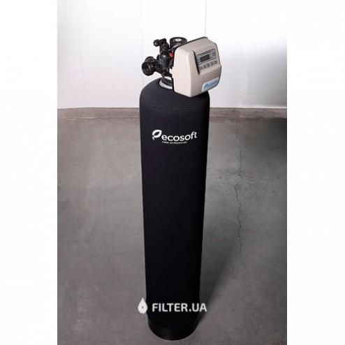 Фото 2 - На зображенні Фільтр для видалення сірководню Ecosoft FPC 1354CT